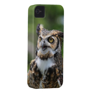 Horned Owl iPhone 4 Case