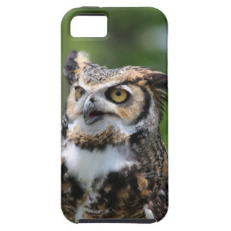Horned Owl iPhone SE/5/5s Case