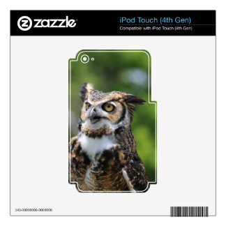 Horned Owl iPod Touch 4G Decal