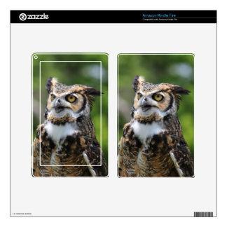 Horned Owl Kindle Fire Decals