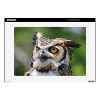 Horned Owl Laptop Decals