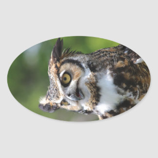 Horned Owl Oval Sticker