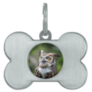 Horned Owl Pet ID Tag