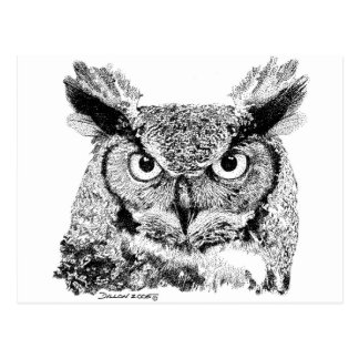 Horned Owl Post Card