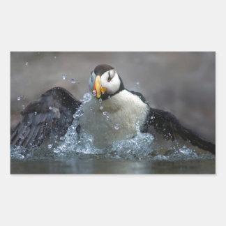 Horned Puffin Bathing - Fratercula corniculata Rectangular Sticker