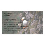 Horned Puffin, Hall Island Business Cards