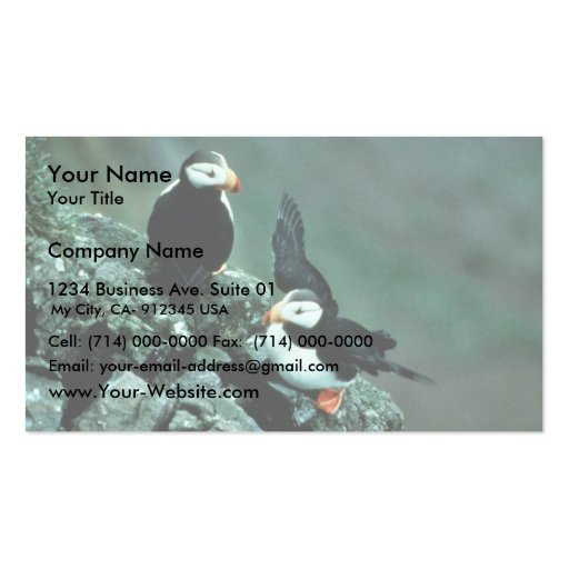 Horned Puffin Pair on Rocks Business Cards