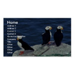 Horned Puffin Trio Business Card