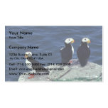 Horned Puffin Trio Business Cards