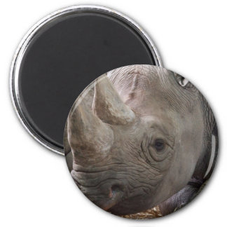 Horned Rhino  Magnet Refrigerator Magnet
