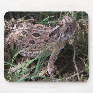 horned toad mouse pads
