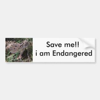 horned toad, Save me!! i am Bumper Sticker