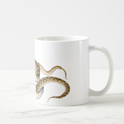 Horned Vipers Coffee Mugs