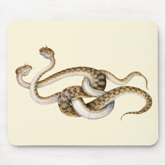 Horned Vipers Mouse Pad