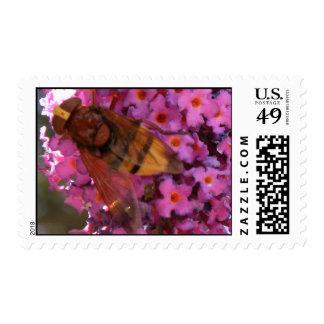 Hornet US Postage Stamp