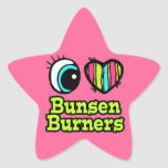 Hornillas de Bunsen brillantes del amor del corazó Calcomanías Forma De Estrellaes