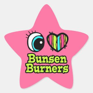 Hornillas de Bunsen brillantes del amor del Pegatina En Forma De Estrella