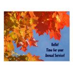 Horno anual del personalizado del servicio de la tarjetas postales