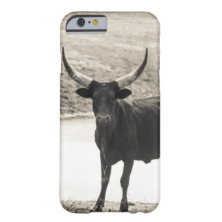 Horns Barely There iPhone 6 Case