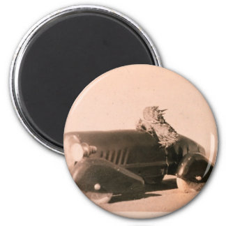 Horny Toad Car 2 Inch Round Magnet