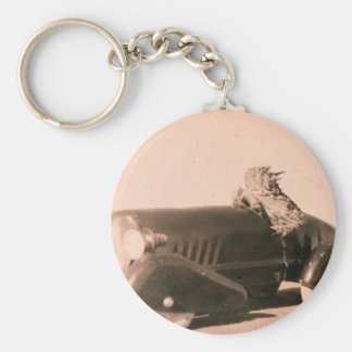 Horny Toad Car Keychain