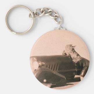 Horny Toad Car Keychain