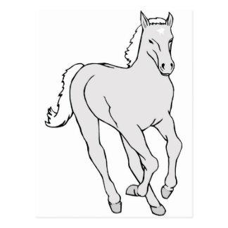 HORSE2 POSTCARD