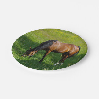 Horse #1 7 inch paper plate