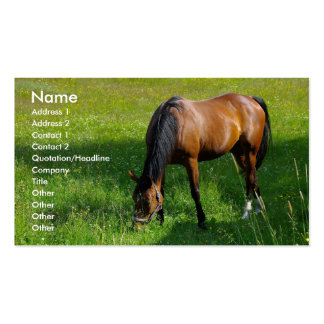 Horse #1 Double-Sided standard business cards (Pack of 100)
