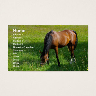 Horse #1 business card