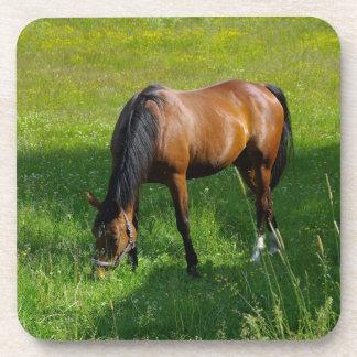 Horse #1 drink coaster
