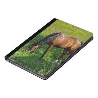 Horse #1 iPad air case