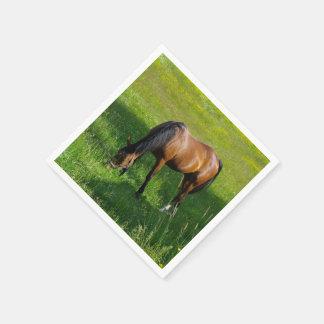 Horse #1 paper napkin