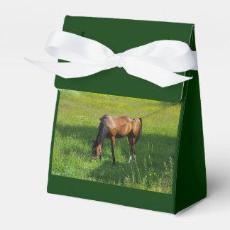 Horse #1 party favor boxes