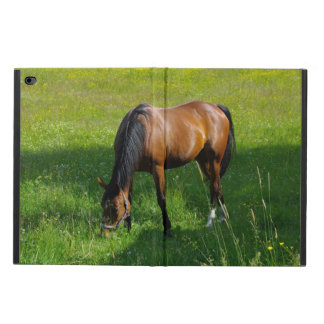 Horse #1 powis iPad air 2 case
