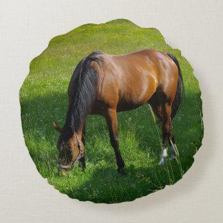 Horse #1 round pillow