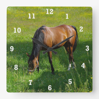 Horse #1 square wall clock