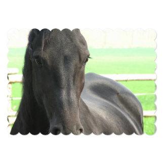 "horse-53 invitación 5"" x 7"""