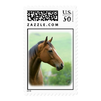 Horse 9A81D-05 Postage
