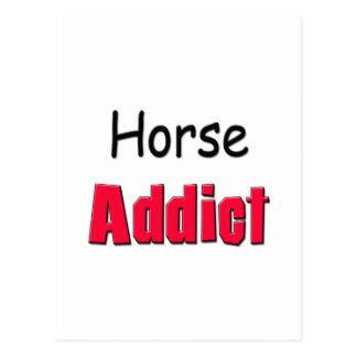 Horse Addict Postcard