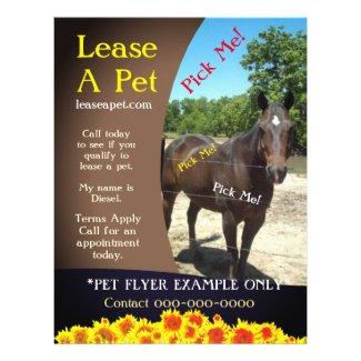 Horse Adoption Flyer