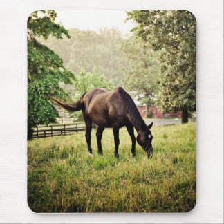 Horse after Storm Mouse Pad