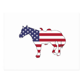 "Horse ""American Flag"" Postcard"
