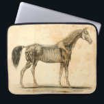 """Horse Anatomy Laptop Sleeve<br><div class=""""desc"""">Feat. artwork from &quot;Outlines of the Veterinary Art&quot; by Delabere P. Blaine (1802).</div>"""