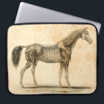 "Horse Anatomy Laptop Sleeve<br><div class=""desc"">Feat. artwork from &quot;Outlines of the Veterinary Art&quot; by Delabere P. Blaine (1802).</div>"