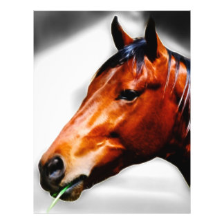 Horse and a blade of grass personalized flyer