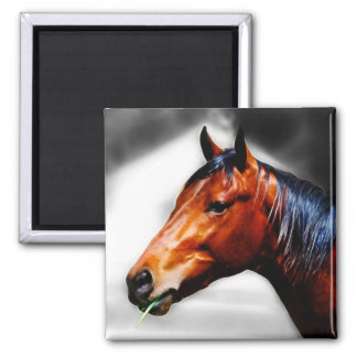 Horse and a blade of grass fridge magnet