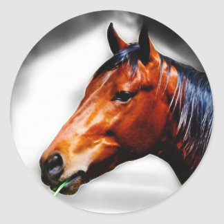 Horse and a blade of grass stickers