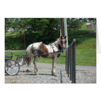 Horse and Buggy Card