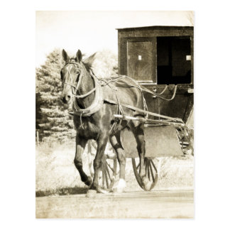 Horse and Buggy Sepia Postcard